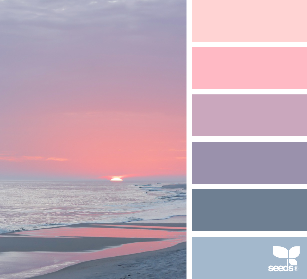 Color shore seeds heavens and design seeds for Color palette for painting