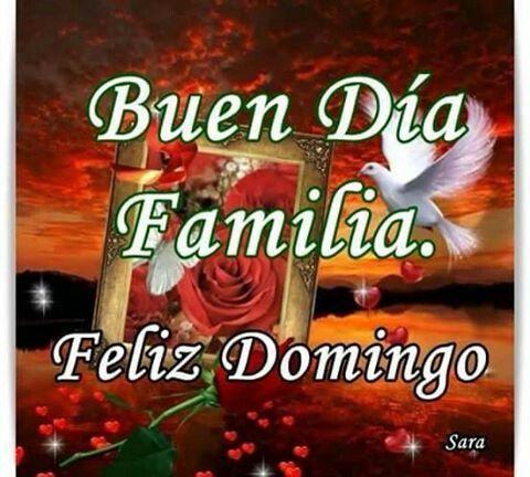 Pin De Juana Quiroz En Saludos Feliz Domingo Feliz Y Bendecido