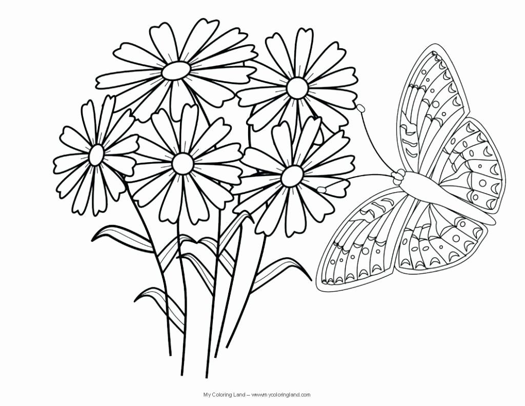 Monarch Butterfly Coloring Page Luxury Butterfly Coloring Pages Southwestdanceacademy C Butterfly Coloring Page Flower Coloring Pages Abstract Coloring Pages [ 791 x 1024 Pixel ]