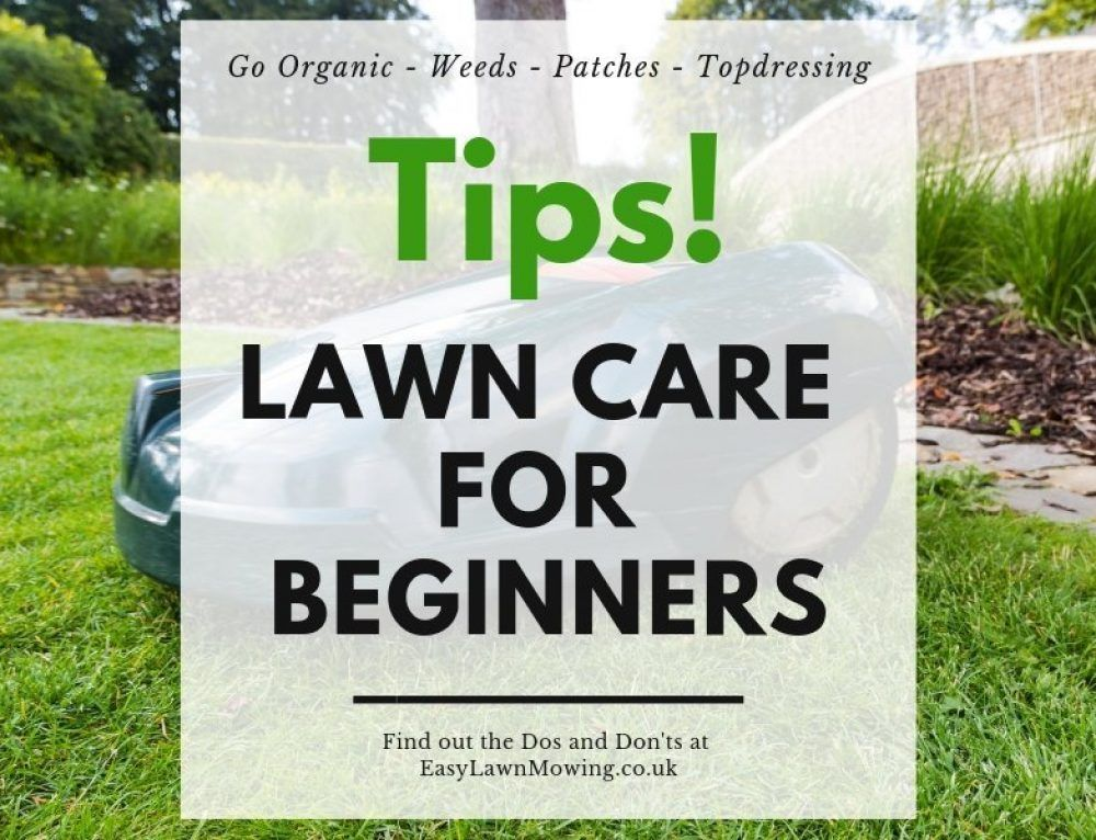 Lawn Care For Beginners More Tips And Garden