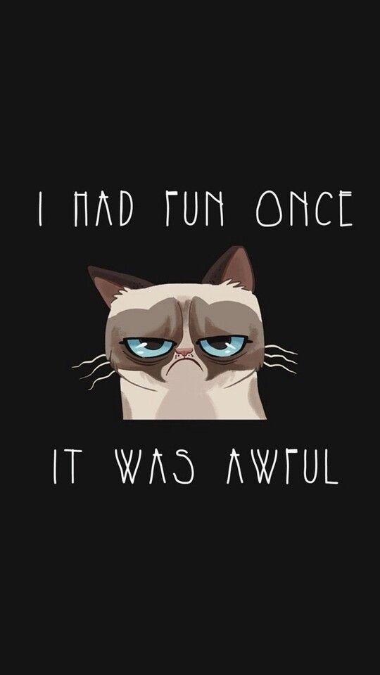 Funny Love Wallpaper Zedge : Grumpy cat wallpaper from Zedge Grumpy cat Pinterest ...