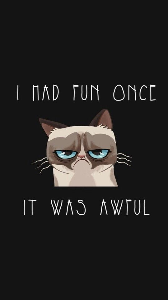 Grumpy cat wallpaper from Zedge Grumpy cat Pinterest ...