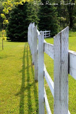 Life thru my Lenz: Fencing