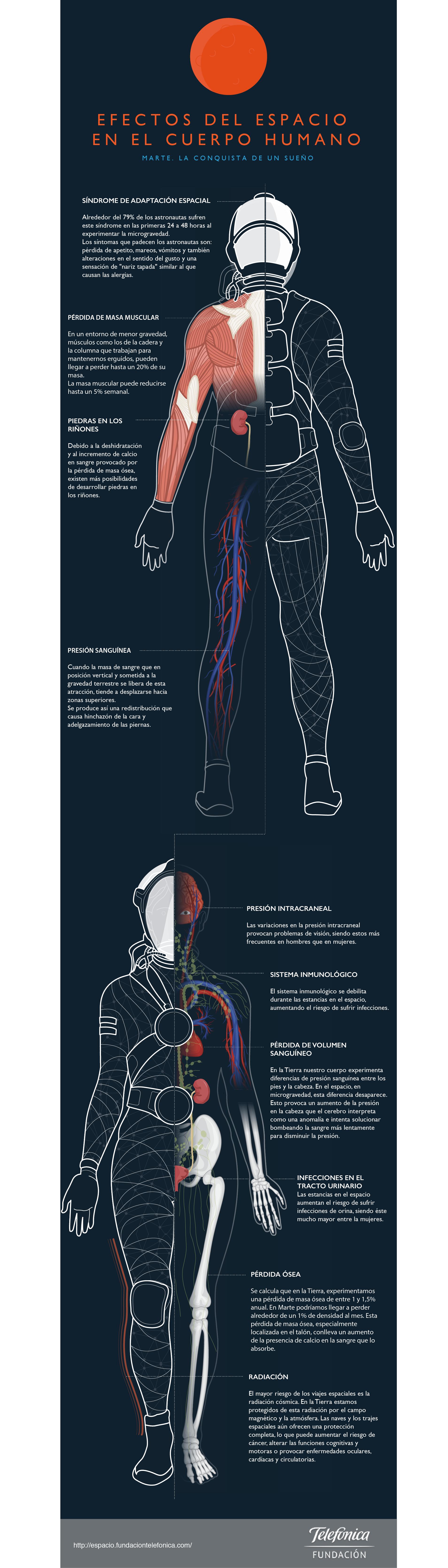 Efectos del espacio en el cuerpo humano. Infografía para exposición ...