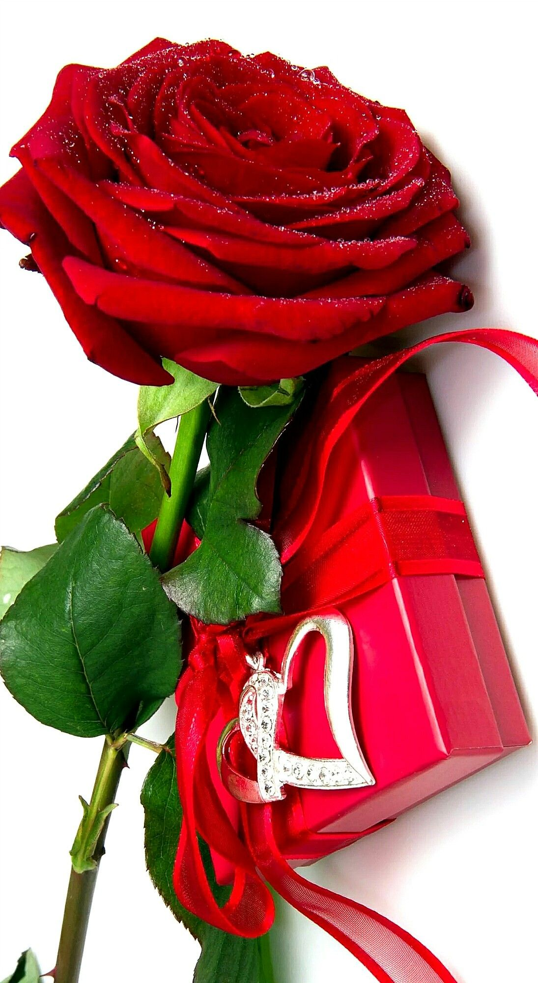 Pin By Tunde Melykuti Simon On My Backgrounds 3 Red Rose Flower Red Rose Pictures Rose Flower Wallpaper