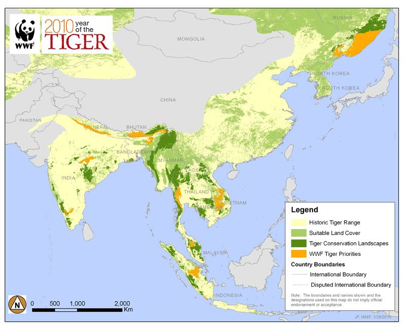 Tiger Range map Tiger population has decreased by about 95 percent - new world map by population