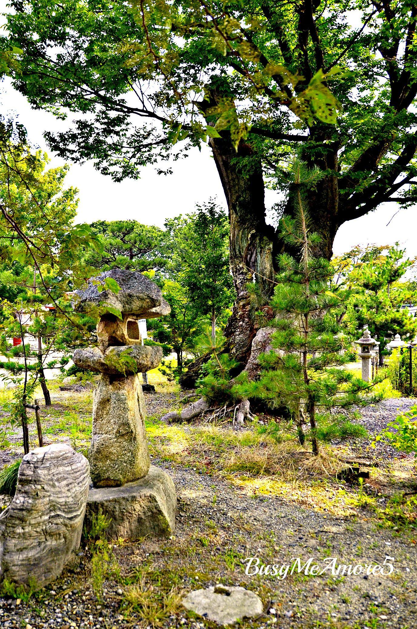 28 Japanese Garden Design Ideas To Style Up Your Backyard: Pin By A G. Maeda On ZEN (Meditation) Japanese Garden