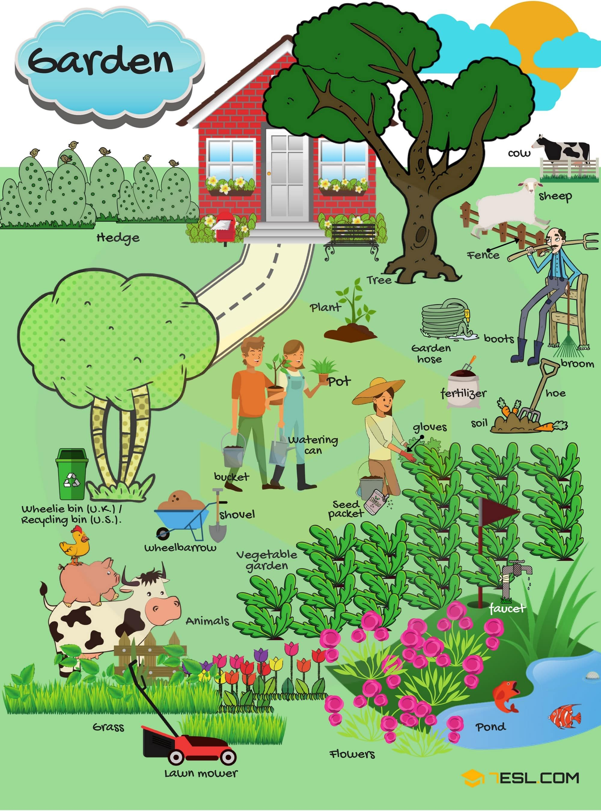 Garden Vocabulary Useful Gardening Terms With Pictures
