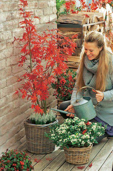 Herbst-Terrasse in leuchtenden Farben #herbstdekoeingangsbereich
