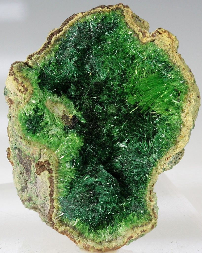 Rare Minerals Rock And Mineral Dealers On Ebay Seller