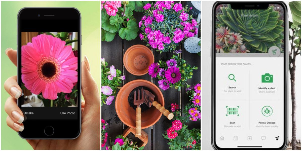 004f73aa6ee6ce6e1a360458a625351e - Best Free Gardening Apps For Android