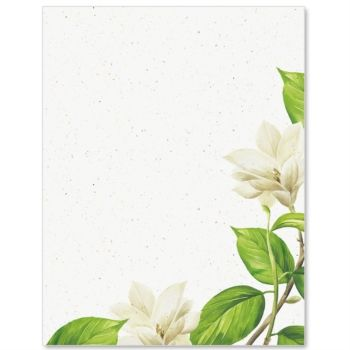 Magnolia PaperFrames Border Papers by PaperDirect