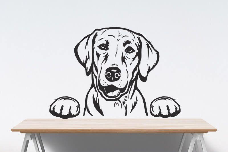 golden retriever ausmalbilder labrador welpen
