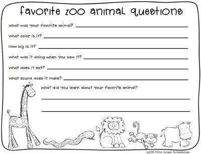 Animal essay