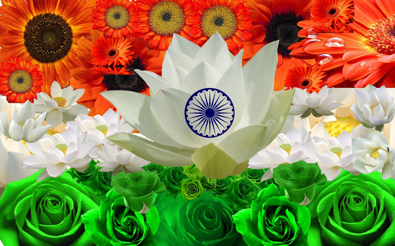 Indian Flag Flower Images