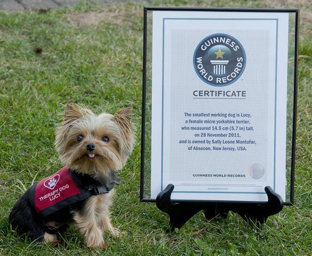 Lucy With Her Guinness Book Record