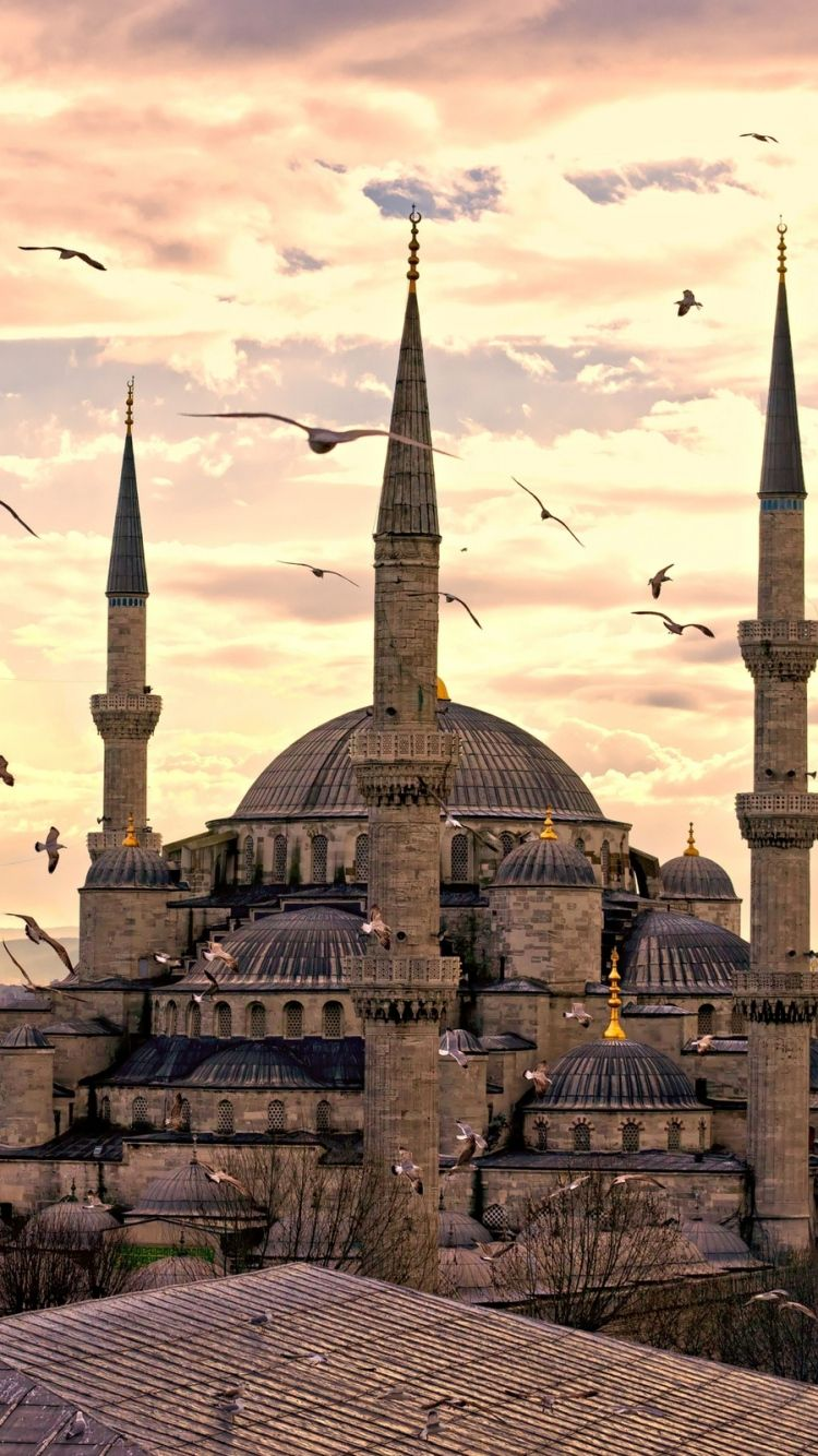 Iphone 6 Istanbul Wallpapers Hd Desktop Backgrounds 750x1334 Istanbul Istanbul Turkey Beautiful Mosques