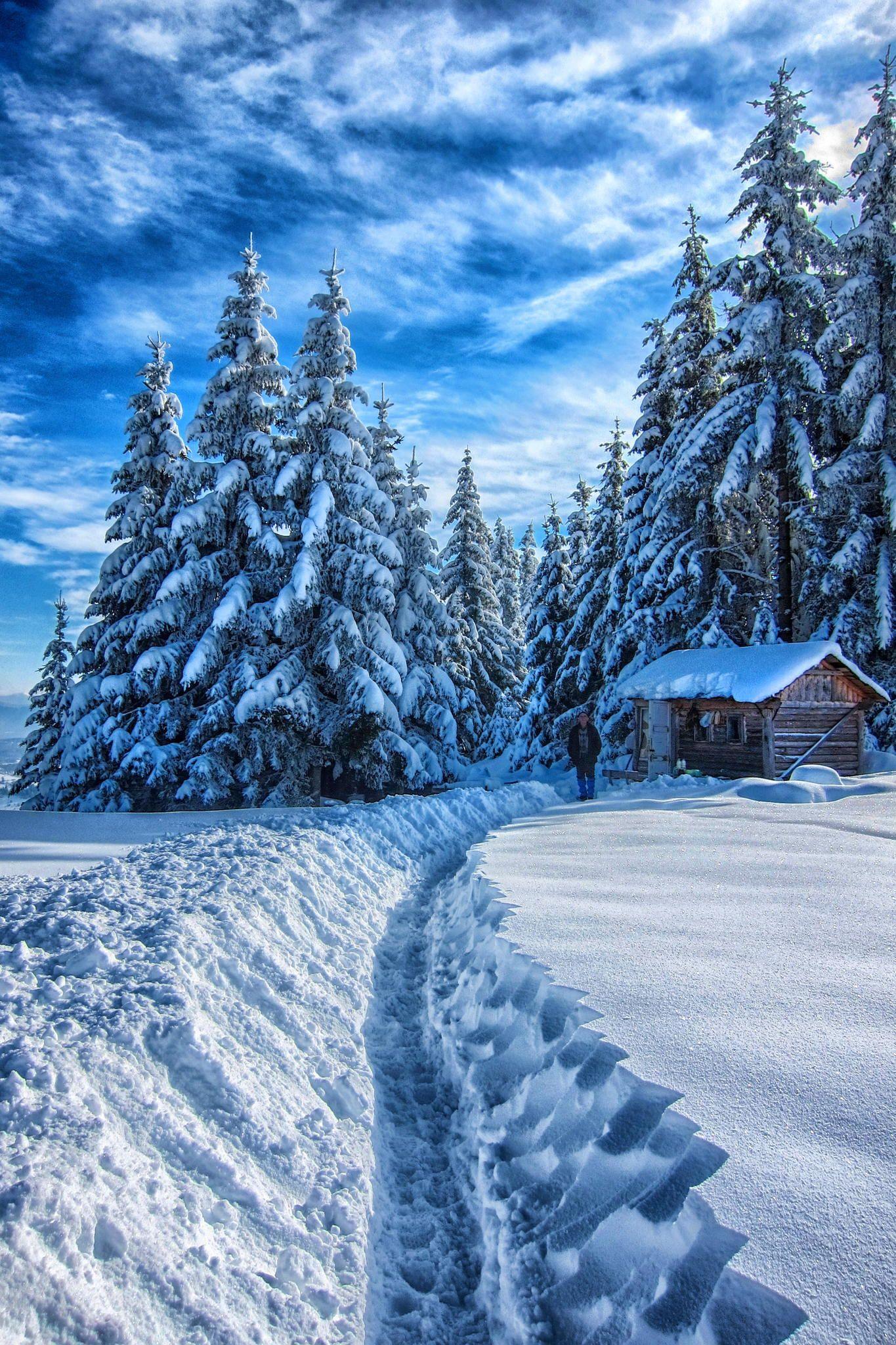 Winter, Sarajevo, Bosnia and Herzegovina | Seasons of Love ...