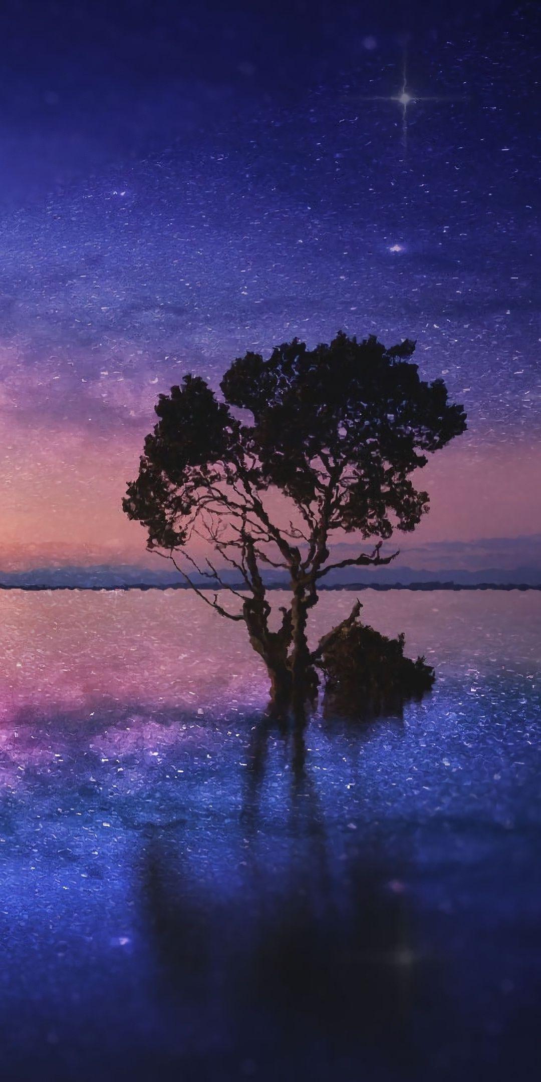 Silhouette Tree Lake Starry Night 1080x2160 Wallpaper Night Sky Wallpaper Starry Night Art Dark Wallpaper Iphone Wallpaper night starry sky lake trees