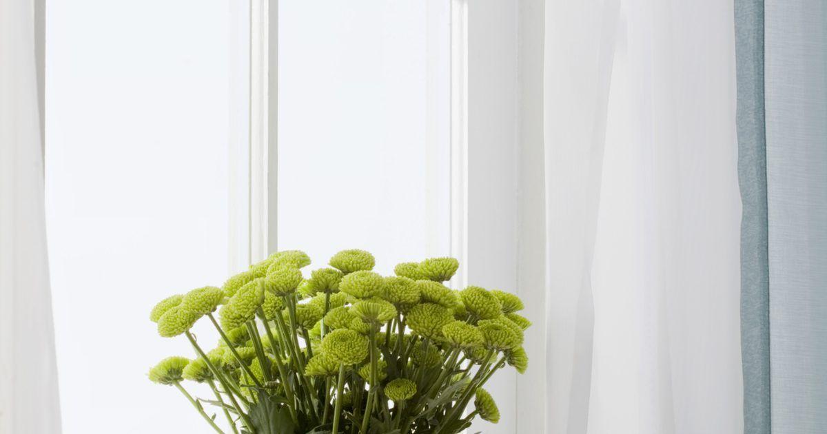 Cómo aplicar masilla para vidrios en la ventana | Pinterest | Vidrio ...