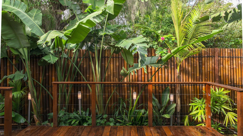 dekorasyonda-bambu
