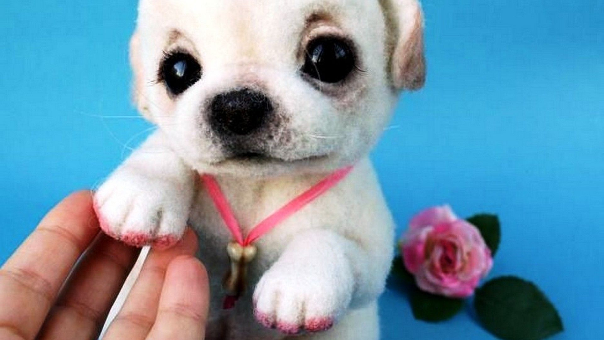 Puppy Pink Nails Wallpaper Hd Best Hd Wallpapers Puppies Cute Dogs Buy Puppies