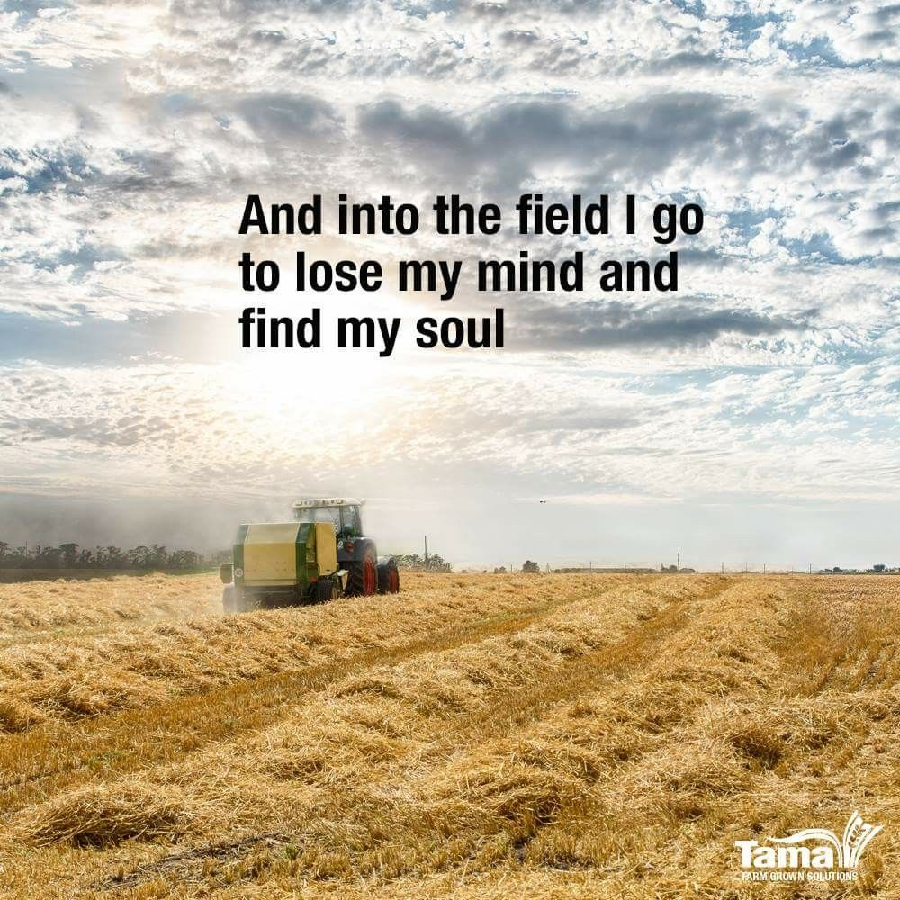 Farming Quotes Mesmerizing Sometimes That's All You Need  Quotes  Pinterest  Farming . Decorating Design