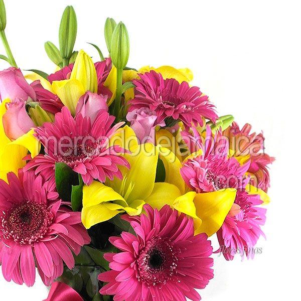Bello Encanto Gerberas Fucsia !| Envia Flores