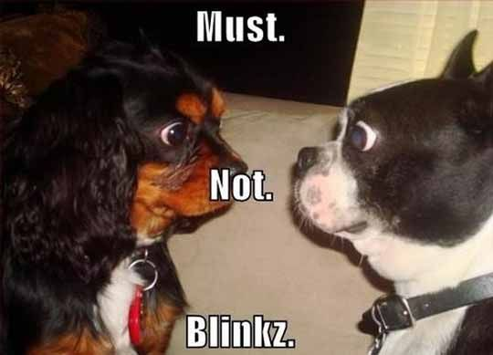 Dont blink first.