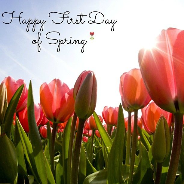 Happy first day of spring we can 39 t wait for flowers to bloom warmer weather and longer days - Happy spring day image quotes ...