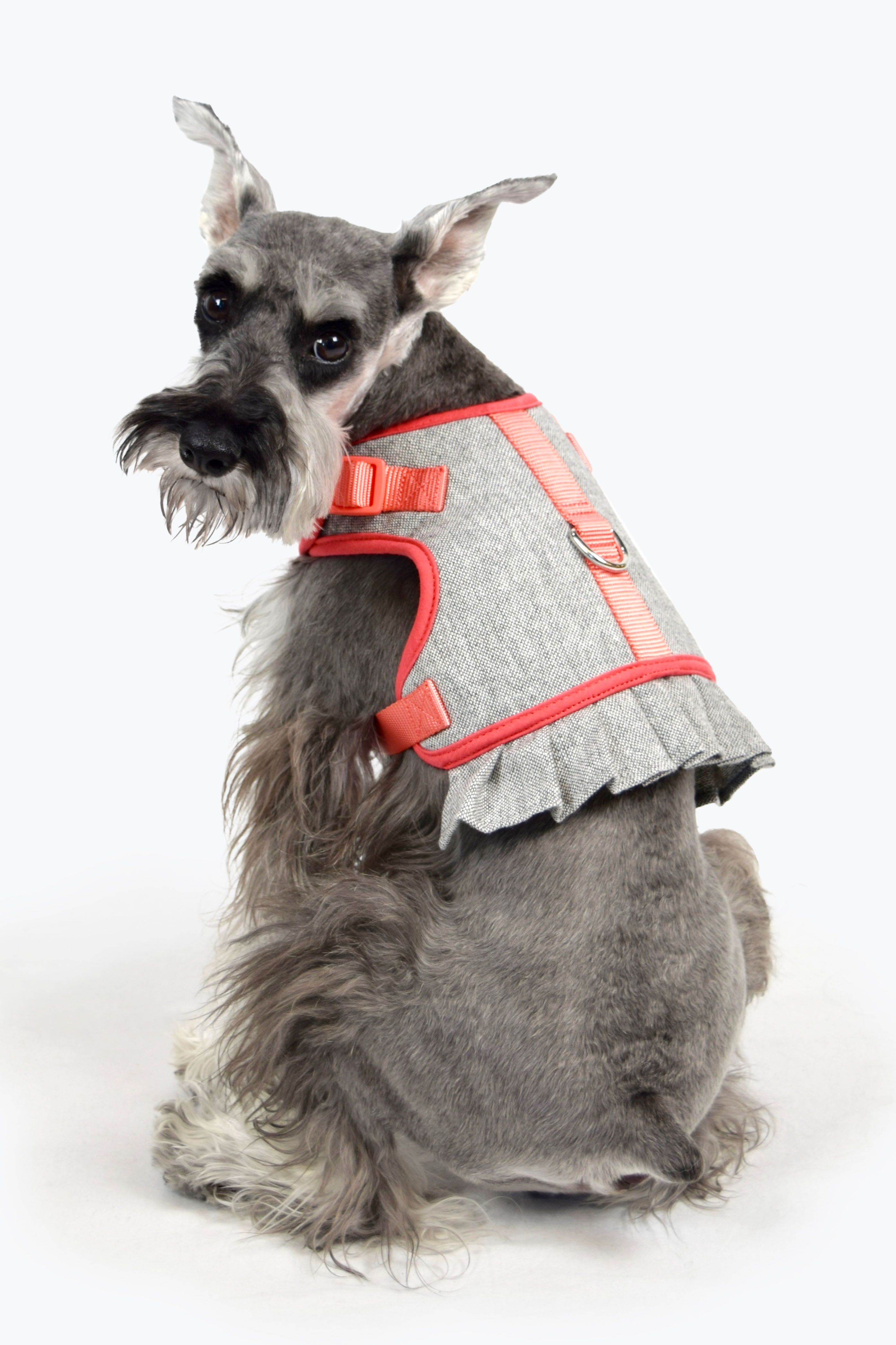 This Pup Is Pretty In Pink Martha Stewart S New Dog Harnesses Are