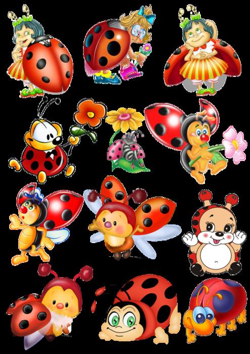картинки детские насекомые
