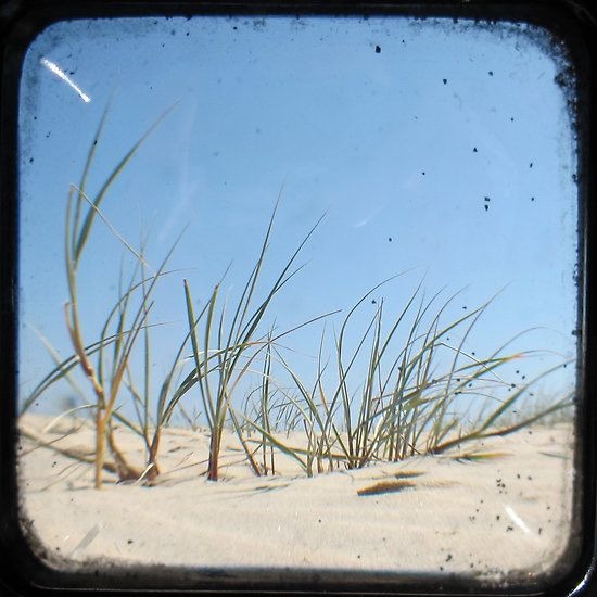 """Sandy Beach - TTV"" Photographic Prints by Kitsmumma 
