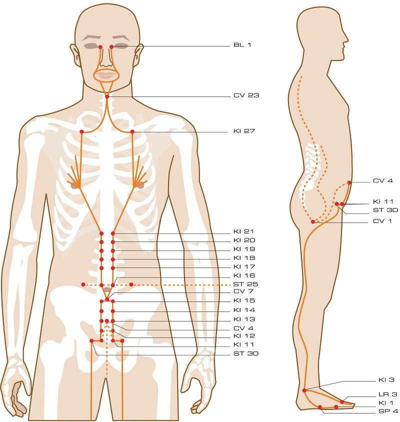 Penetrating Vessel Acupuncture Points Acupuncture Points