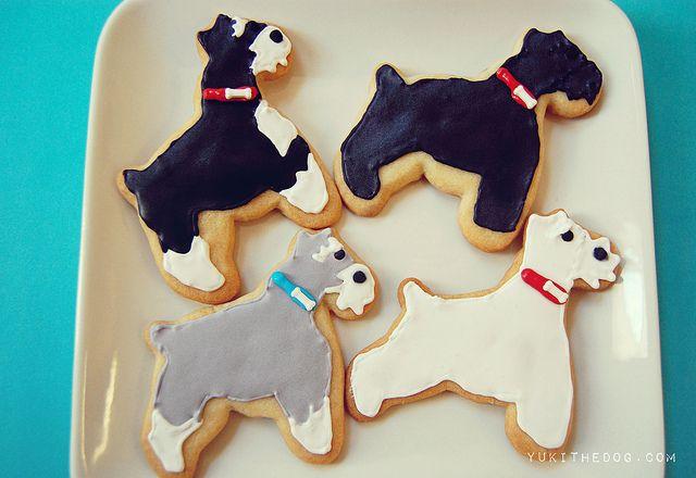 Miniature Schnauzer Cookies by Melissa Heard