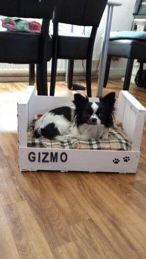 Hondenbed van sinaasappelkistje!   hondenmand   Pinterest