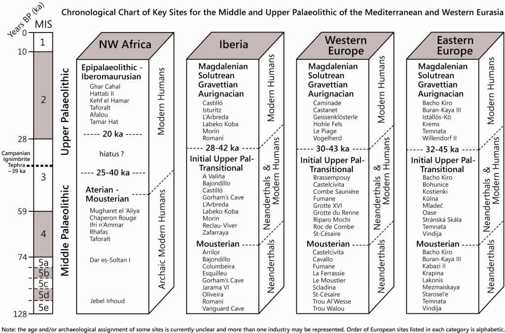 Palaeolithic timeline chart | ARCHAEOLOGY | Human evolution, Diagram