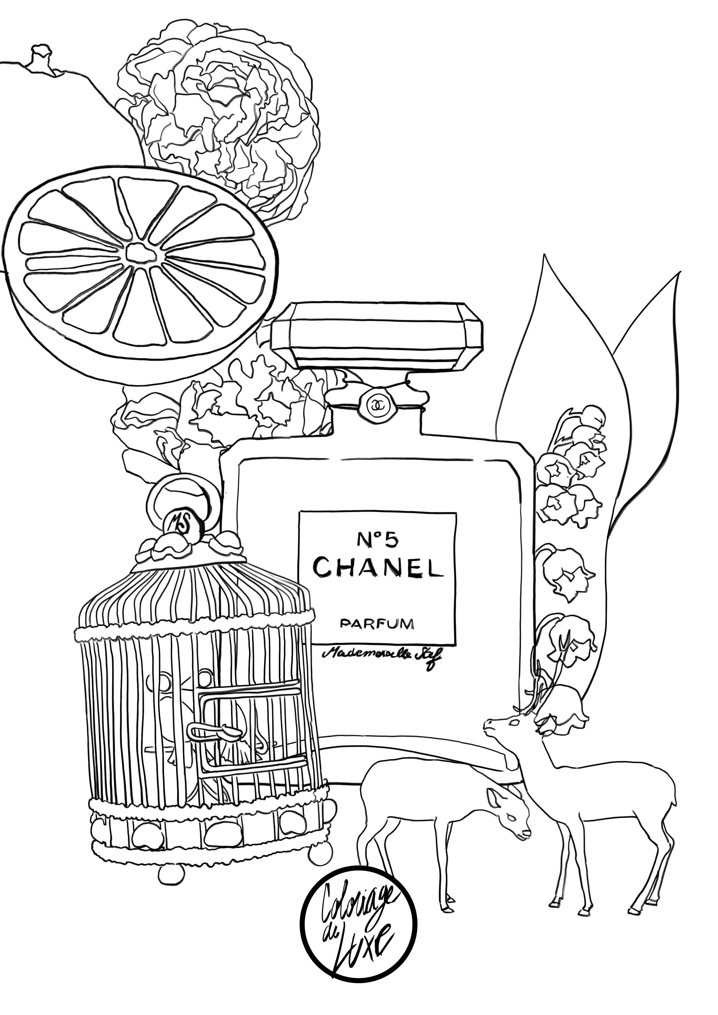 zen coloring perfume chanel 5 detailed coloring