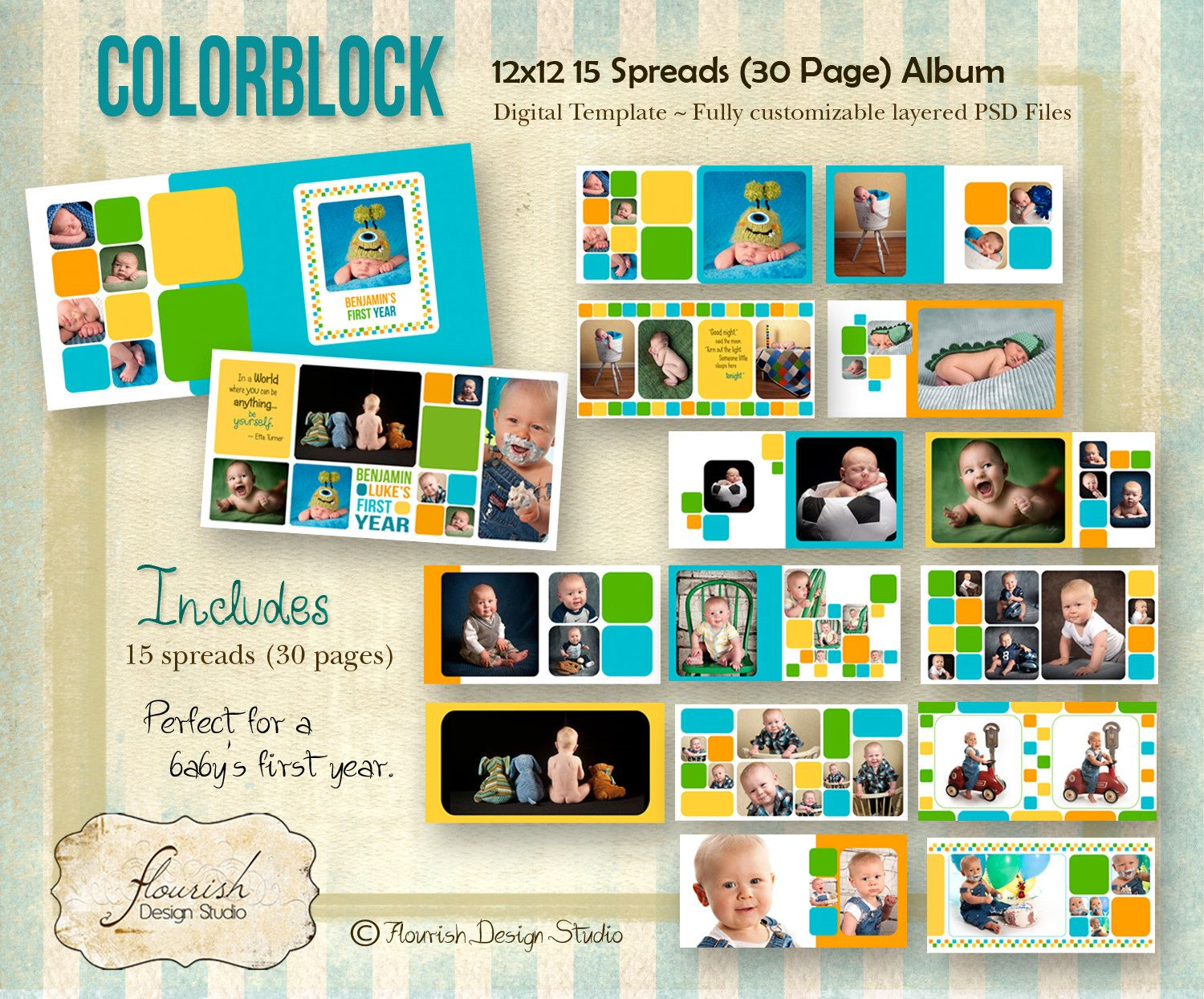 Instant Download 12x12 Baby Boy First Year Album Template Color