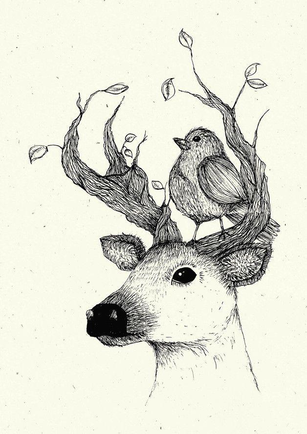 Illustration Als Schone Wanddekoration Poster Mit Einem Liebevoll Illustrierten Hisch Mit Einem Vogel P Hirsch Illustration Grafische Illustration Tierkunst