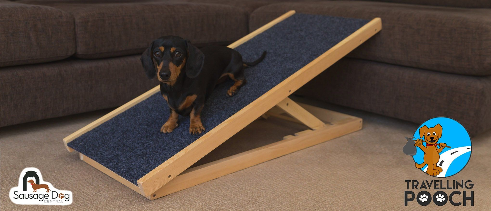 Dachramp Website Feature 2 With Images Dog Ramp For Bed Dog Ramp Diy Dog Stuff