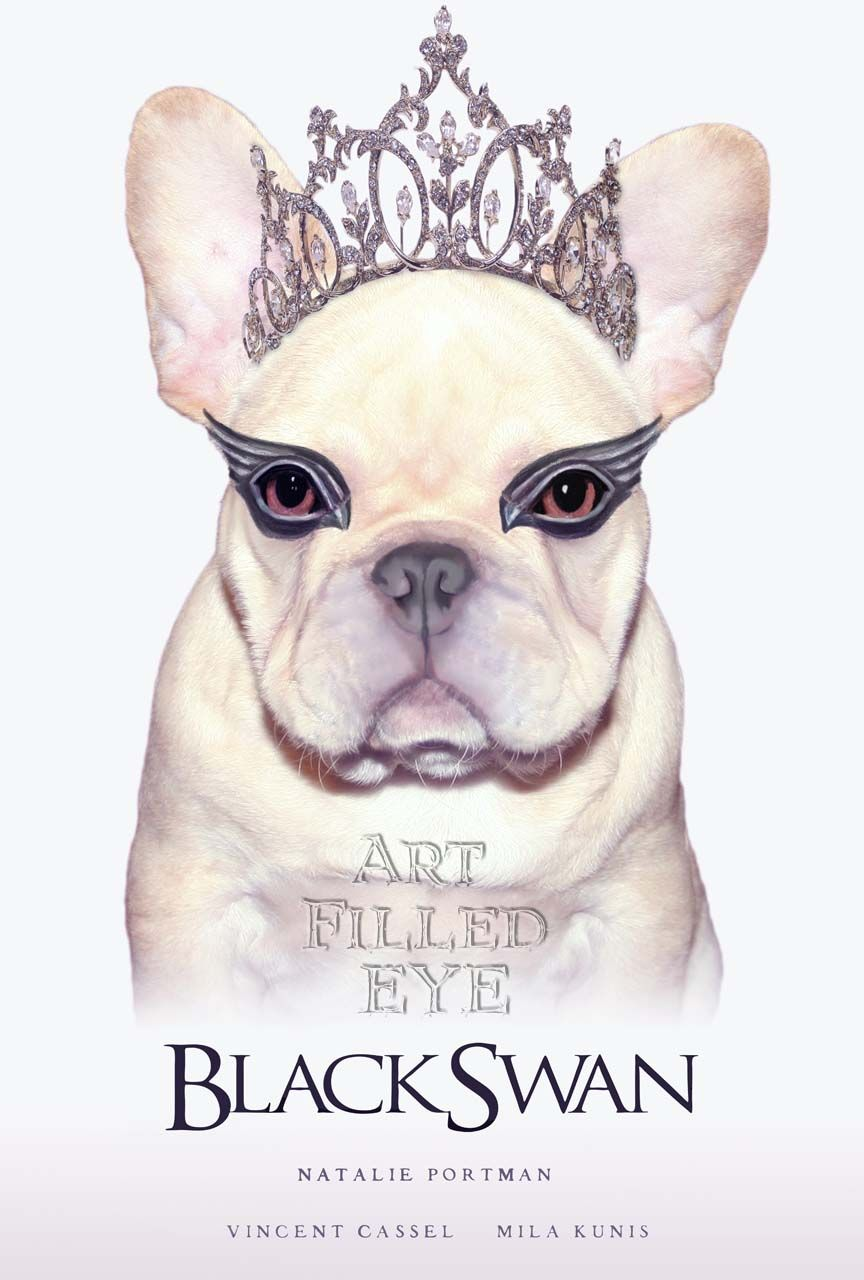 Black Swan Movie Poster- Cream French Bulldog Print  https://www.etsy.com/listing/161589796/black-swan-movie-poster-cream-french