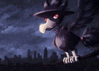 http://vignette3.wikia.nocookie.net/pokemontowerdefensetwo/images/8/89/Murkrow_banner.jpg/revision/latest?cb=20160720034345