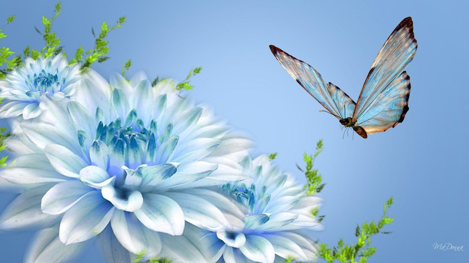 Real Butterfly Inspiration Blue Flower Wallpaper Wallpaper