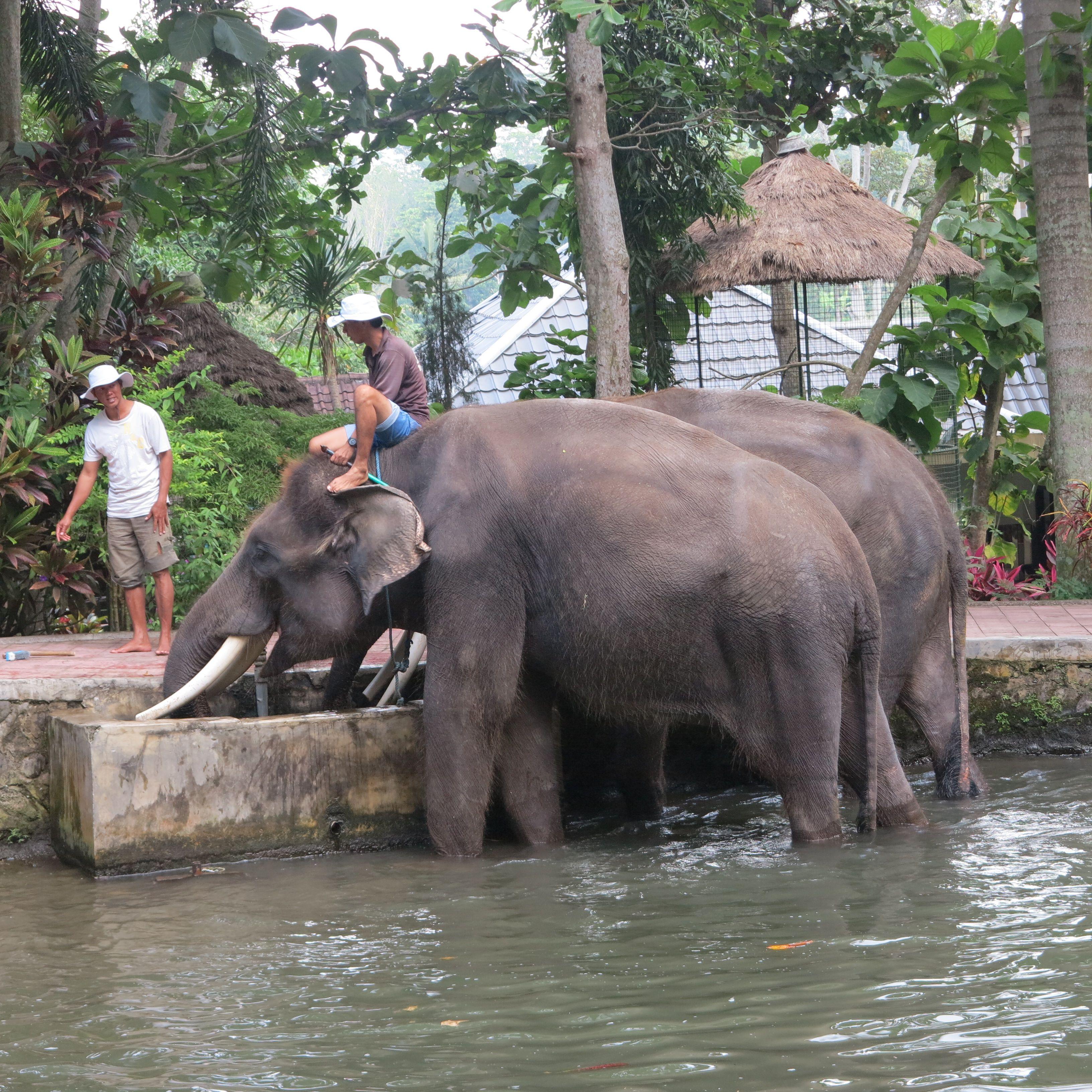 Die Besten Hotels In Bali