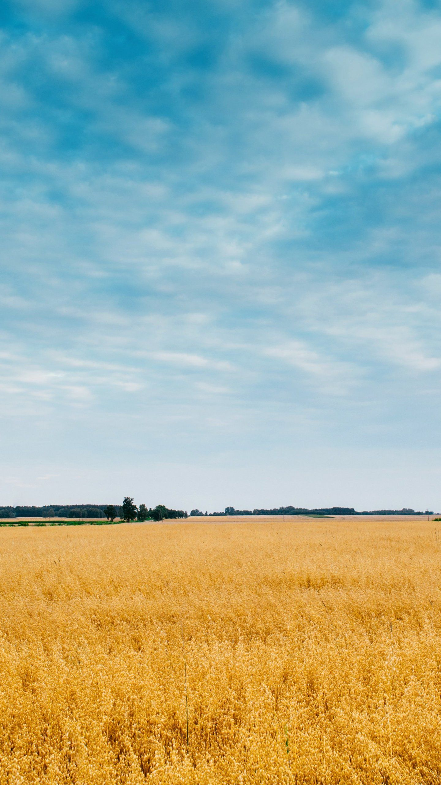 Field And Big Sky Wallpaper Iphone Android Desktop Backgrounds Iphone Wallpaper Big Sky Scenic Wallpaper