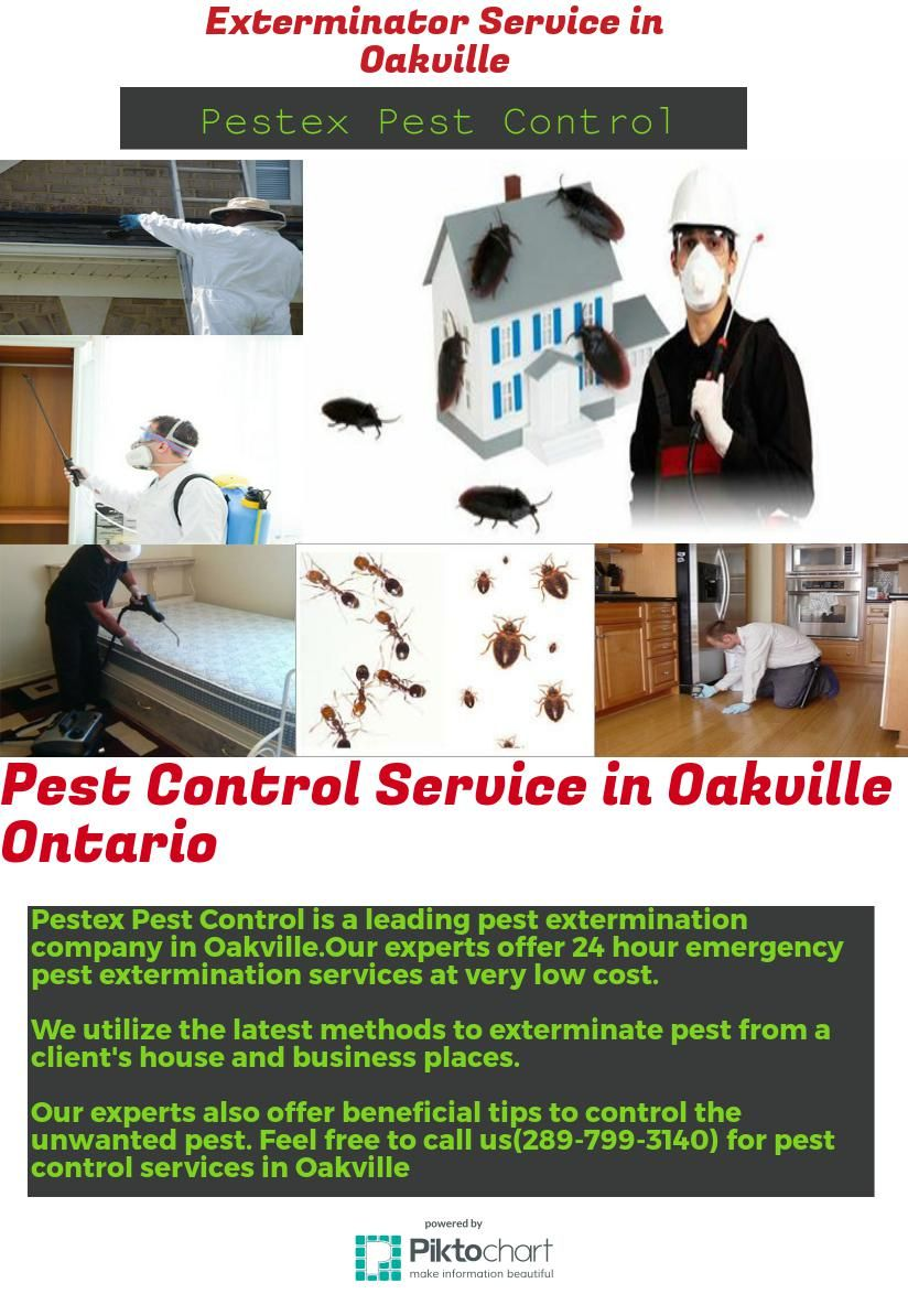 Pest Control Service in Oakville Ontario infographic http
