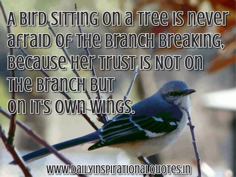 Self Trust! A bird sitting on a tree never afraid of the branch breaking because her trust is not on the brach but on it's own wings.