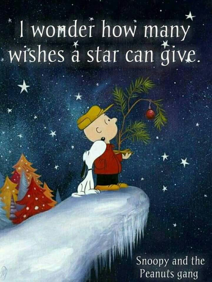 If You Wish Upon A Star Perhaps It Will Come True Snoopy Christmas Charlie Brown Christmas Christmas Art