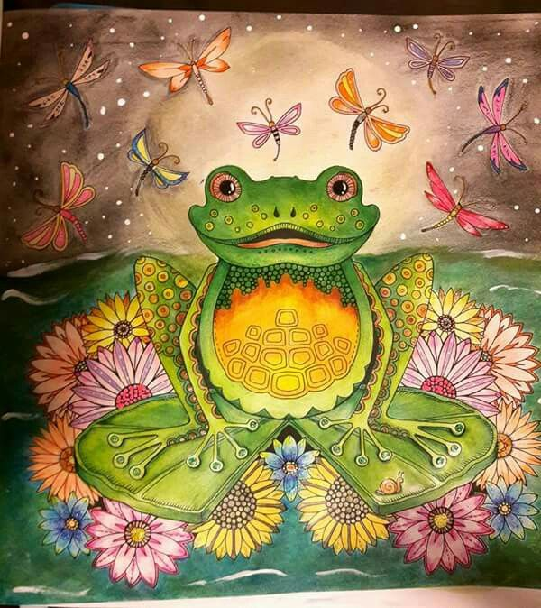 Frog Enchanted Forest A Cool Crazy Coloring Pinterest